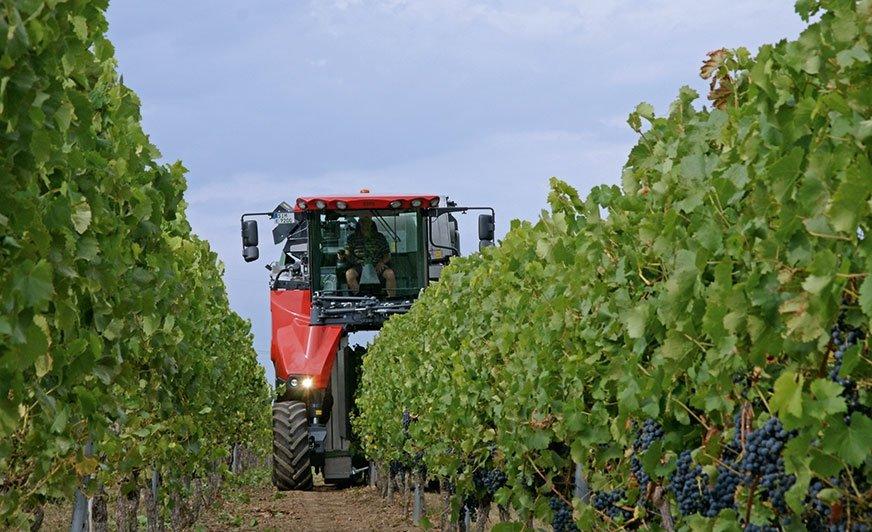 Samobieżne kombajny do zbioru winogron firmy ERO wymagają najlepszej ochrony przed korozją. (Źródło: ERO GmbH)
