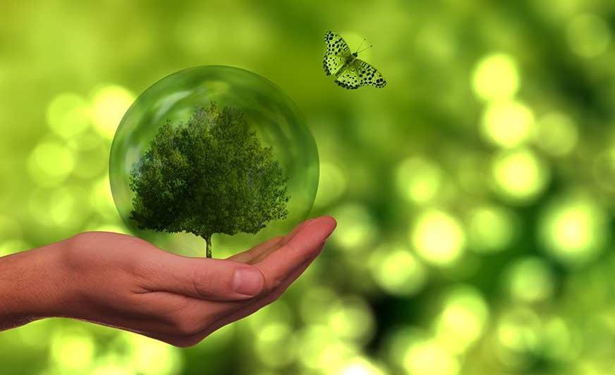 W nowej strategii firma Hempel stawia przede wszystkim na zrównoważony rozwój.